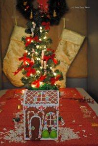 WFO Christmas 024 copy