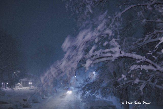 blizzard 2013 005 copy