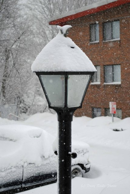 blizzardmorning 005 copy