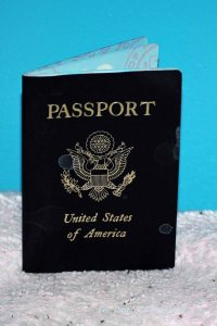 passport 002 copy