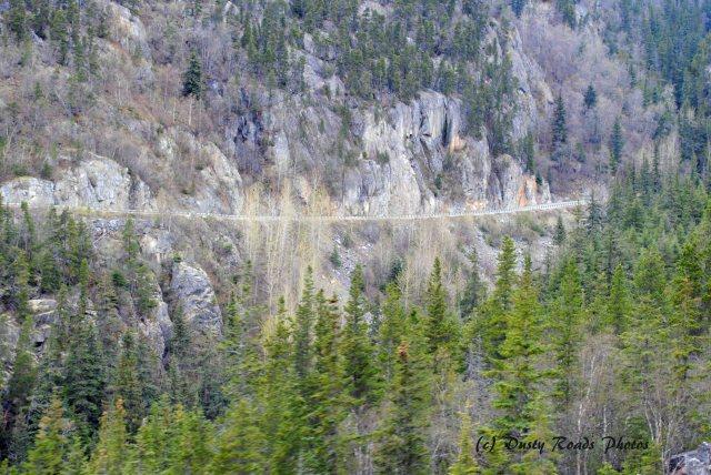 Alaska2013 338 copy