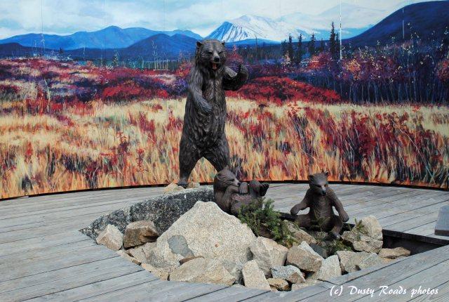 Alaska2013 375 copy