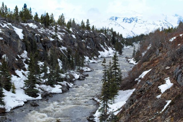 Alaska2013 379 copy