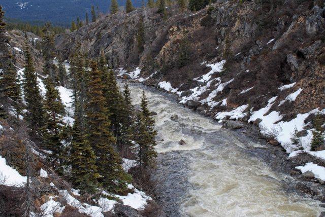 Alaska2013 380 copy