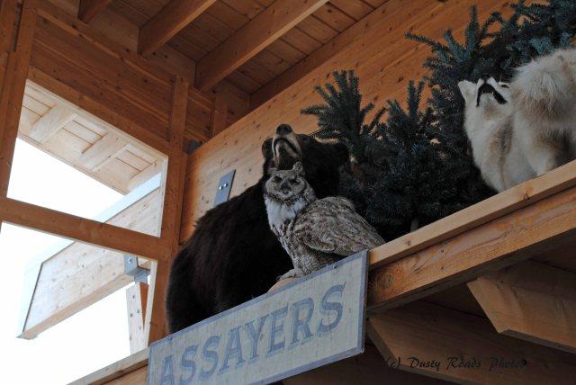 Alaska2013 405 copy