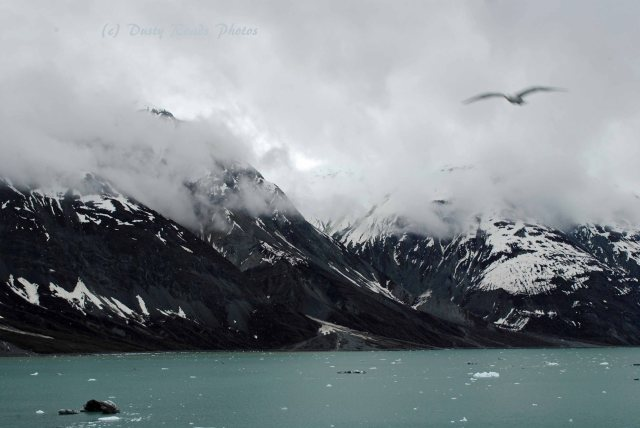 Alaska2013 516 copy