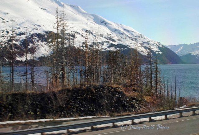 Alaska2013 731 copy