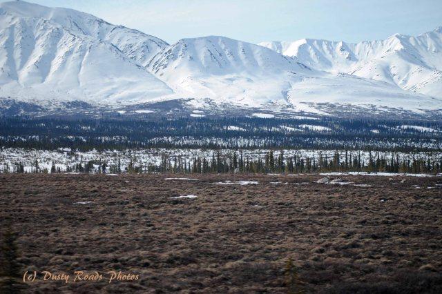 Alaska2013 884 copy