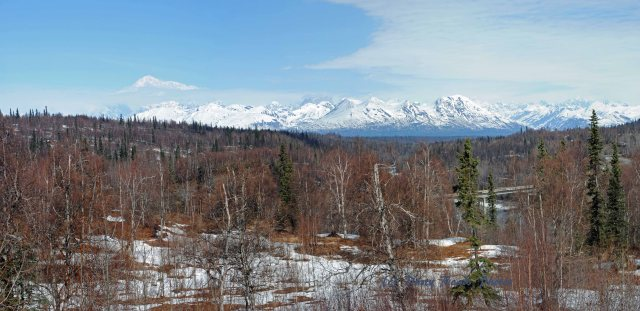 Mt Mckinley copy