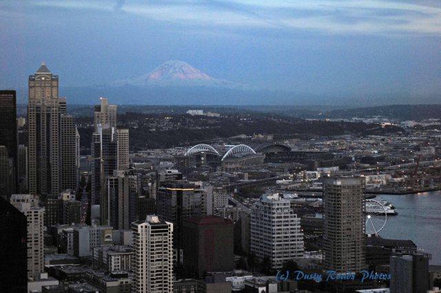 Seattle 181 copy