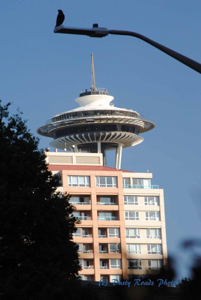 Seattle 224 copy
