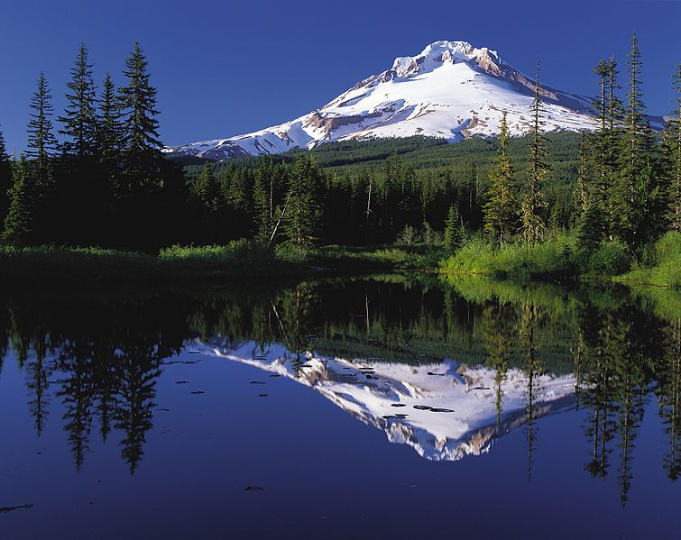 mt_hood_hikers