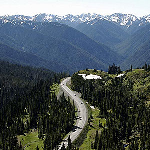 olympic-hurricane-ridge-m