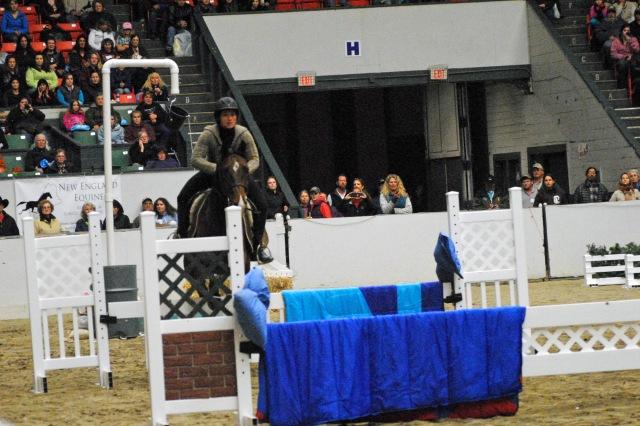 horse show 116a