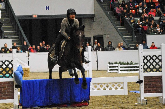 horse show 119a copy