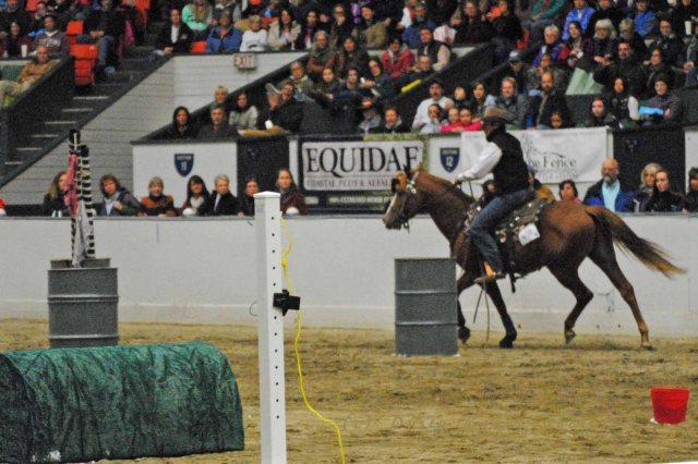 horse show 130 copy