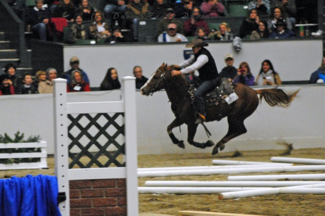 horse show 138a copy