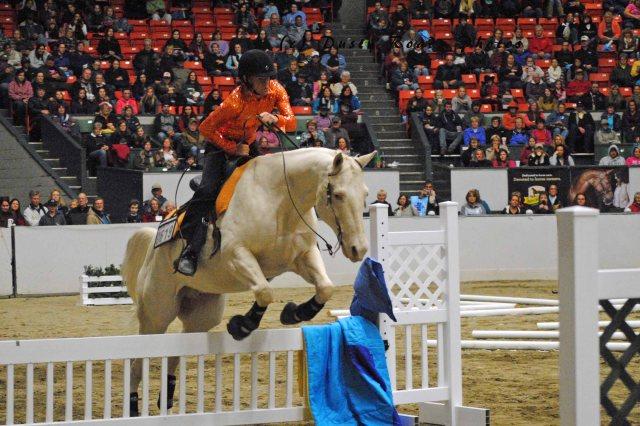 horse show 145a copy