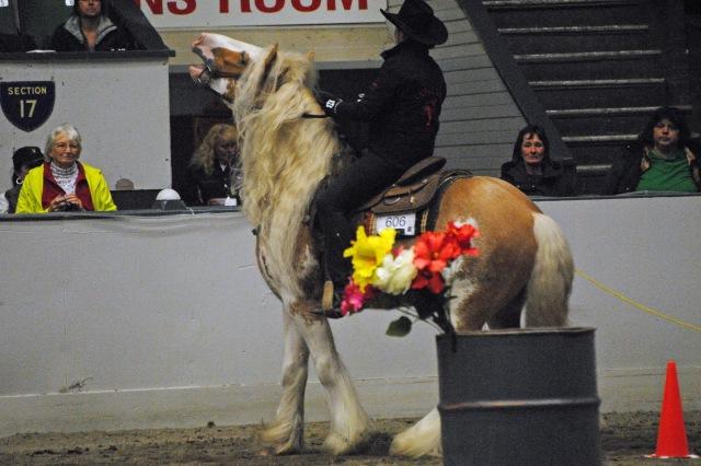 horse show 159a