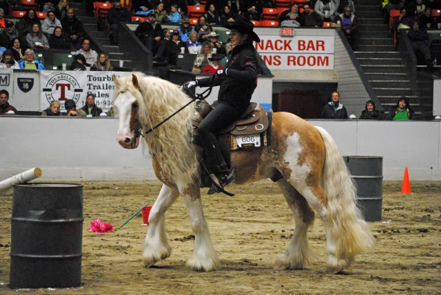 horse show 162A copy
