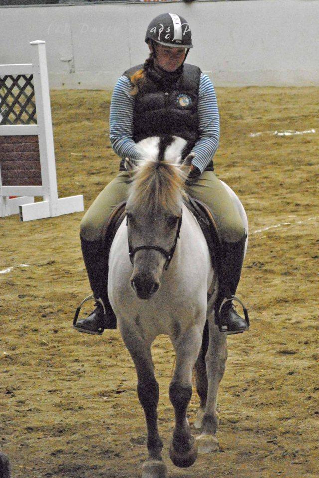 horse show 250a copy