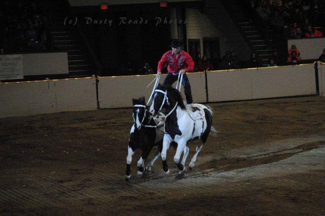 horse show 289 copy