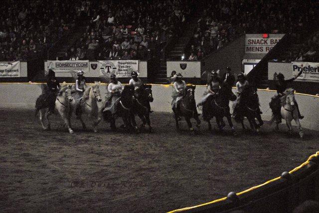 horse show 344 copy