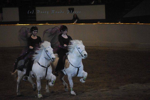 horse show 353 copy