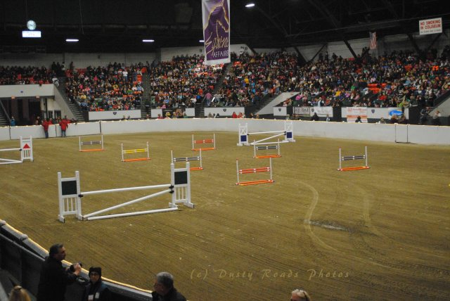 horse show 359 copy