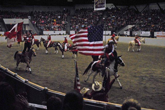 horse show 436 copy
