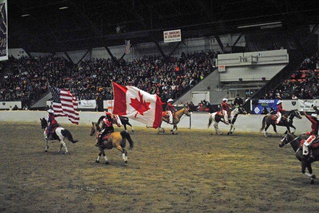 horse show 442 copy