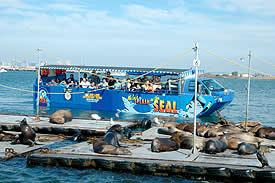 san-diego-seals-3