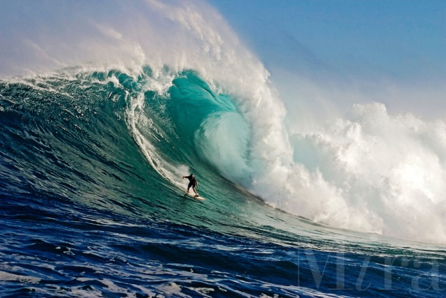 SURFER AT PEAHI (JAWS), MAUI, HAWAII.