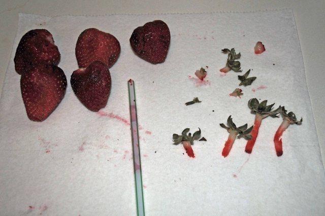 Strawberries 001a