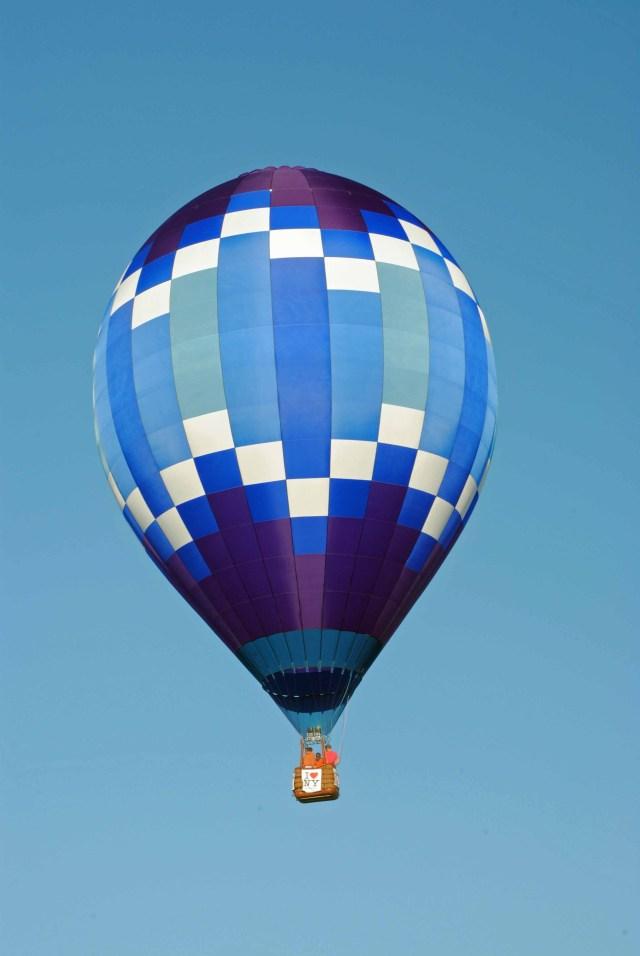 Balloons 2014 027 copy