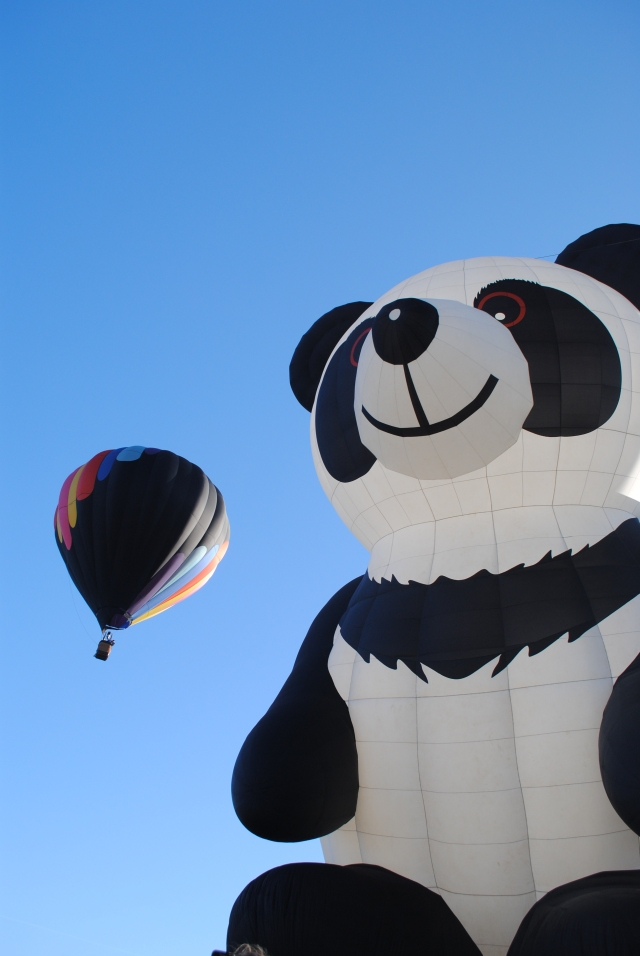 Balloons 2014 063 - Copy
