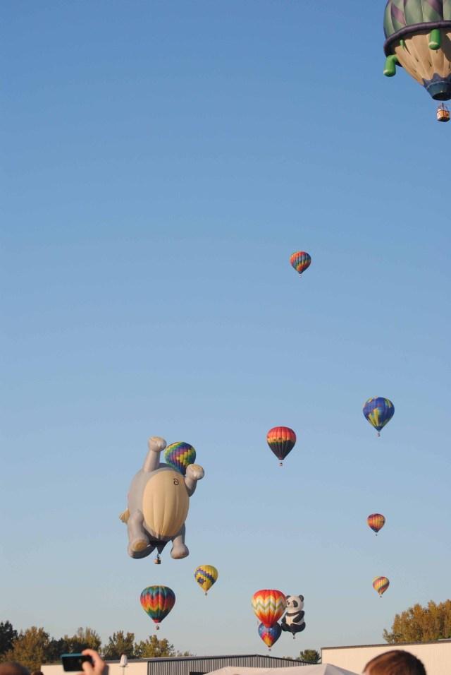 Balloons 2014 107 copy