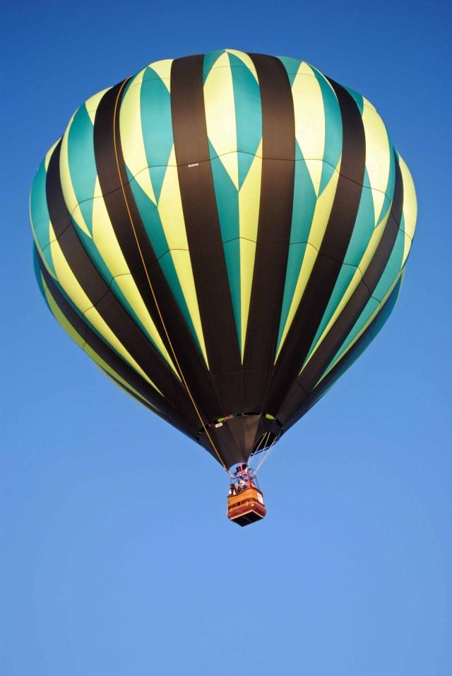 Balloons 2014 118a copy
