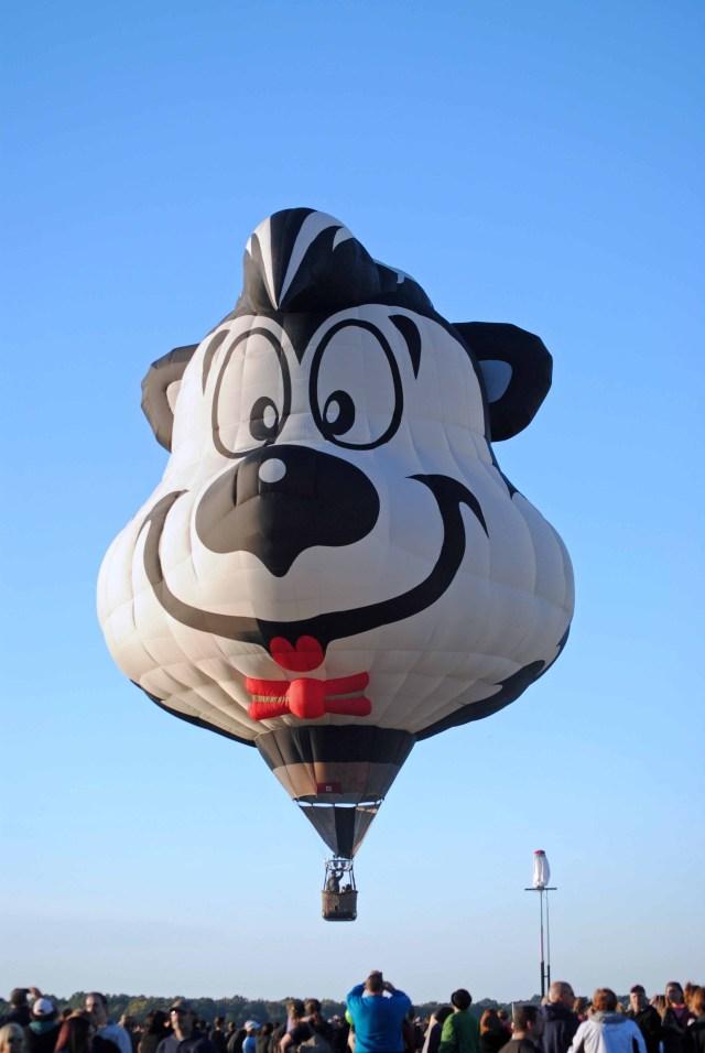Balloons 2014 146a copy