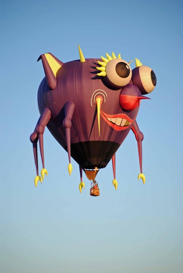 Balloons 2014 166a copy