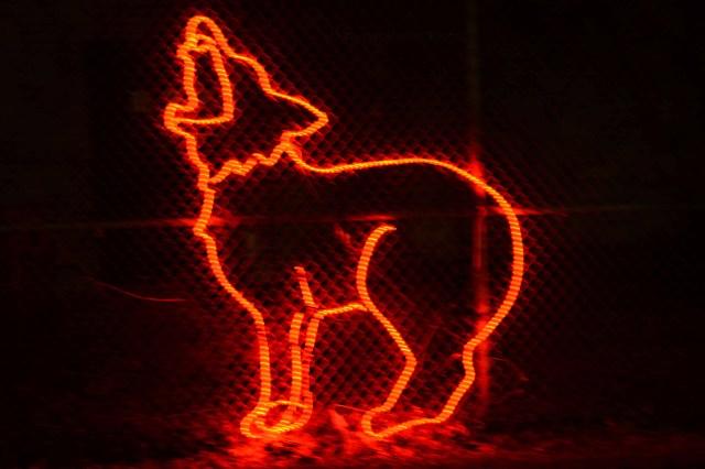 zoo lights 002 copy
