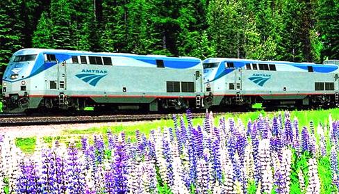Amtrak_PurpleFlowers
