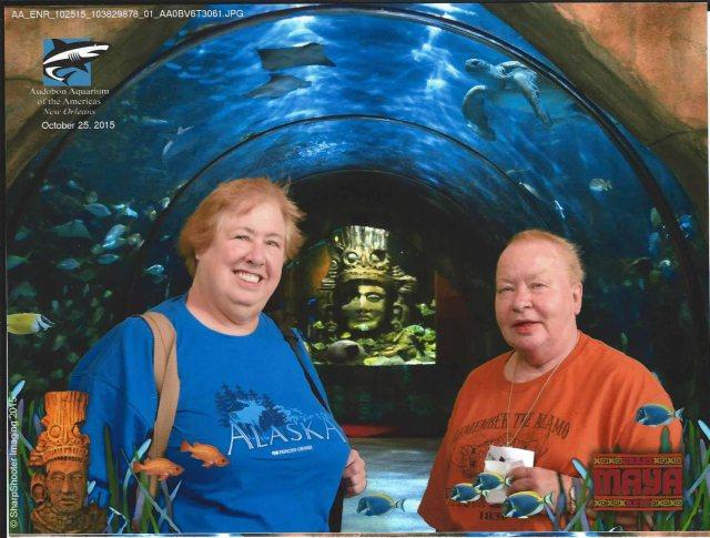 NO Aquarium