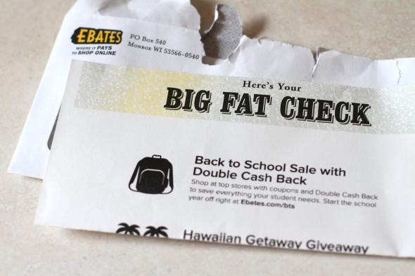Big-fat-check