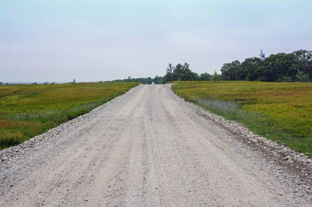 Maine Dirt Road